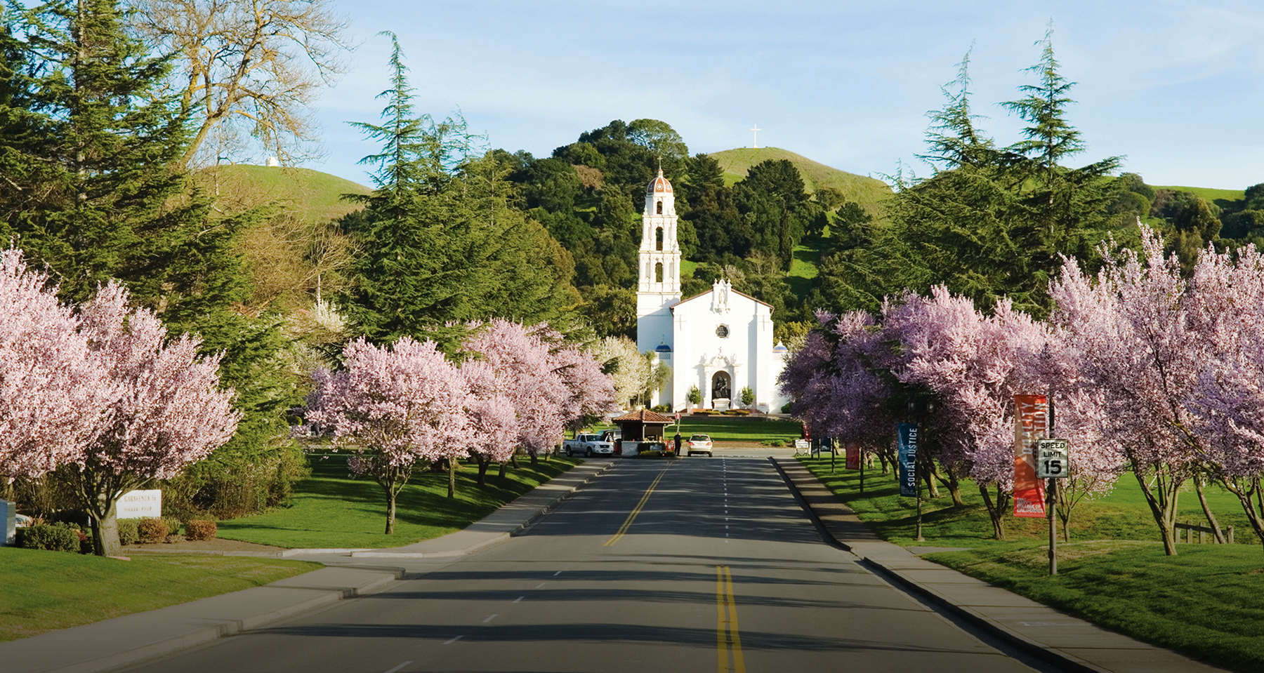 Chapel at the end of the Saint Mary's College entry way where cherry blossoms are in bloom