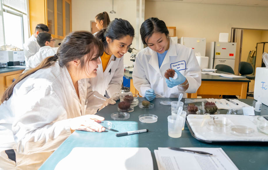 Three girls smiling while inspecting a sea anemone in a classroom.