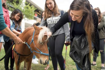 Students petting a horse